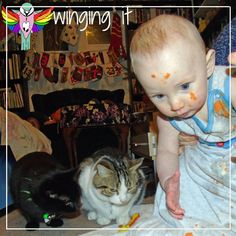 I have five cats and a five month old and I've noticed a lot of similarities and difference between cats and babies and my son. Here are the similarities.