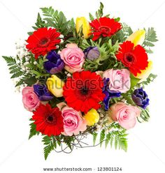 blue red pink and yellow flower arrangements - Google Search