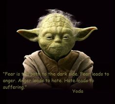 Fear is the path to the dark side. Fear leads to anger. Anger leads to hate. Hate leads to suffering.  Yoda.
