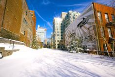 Highline Park, NYC, Winter