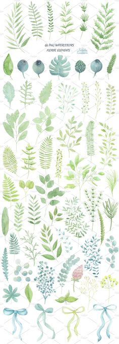 Big green set in watercolor. by Natali_art on @creativemarket