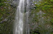 Valley Waterfall Hike & Garden Tour Honolulu Waterfall Hikes, Hiking Tours, United States, Garden, Outdoor, Garten, Outdoors, Outdoor Games, Gardening