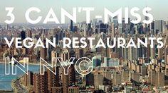 3 Can't-Miss Vegan Restaurants in New York - VeegMama