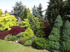 A visit to David Ward's garden