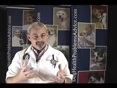 Natural Diuretic for Dogs with Congestive Heart Failure Hawthorn, and dandelion diuretic root for edema, help dogs with water retention. Dog Health Care, Health Tips, Dog Sneezing, Some Love Quotes, Free Facebook Likes, Inspirational Quotes Wallpapers, Natural Diuretic, Social Media Impact, Easy Food To Make