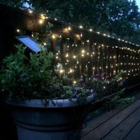 Led string lights, String lights and Solar on Pinterest