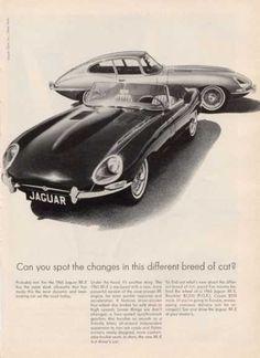 Jaguar Xk-e Coupe and Convertible (1964)