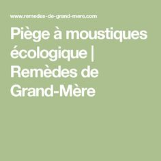Piège à moustiques écologique   Remèdes de Grand-Mère