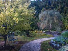 Meadowlark Botanical Gardens in Vienna, VA looks like something from a dream romance ♡♡