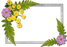 Tons of png frames Grey Picture Frames, Framed Wallpaper, Birthday Frames, Text Background, Borders And Frames, Flowering Vines, Cool Backgrounds, Paper Frames, Wedding Frames