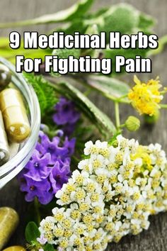 """9 Medicinal Herbs For Fighting Pain - If and when possible, I prefer to take a more """"natural"""" approach to treating my pain. Believe it or not, there are medicinal herbs out there that are very good at treating pain. They won't necessarily """"cure"""" you from a specific condition, but they might help make the symptoms more bearable. Healing Herbs, Medicinal Herbs, Holistic Healing, Homeopathic Remedies, Health Remedies, Natural Home Remedies, Natural Medicine, Herbal Medicine, Survival Life"""