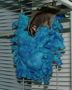 Suz' Sugar Gliders - No Sew Accessories