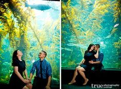 Featured Engagement Shoot: Reenacting a First Date at the Birch Aquarium   Sarah Lynn  Archie / San Diego wedding photography