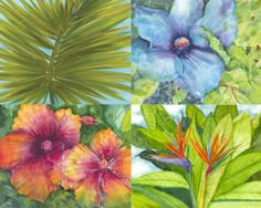 Jake Marshall watercolors, four tropical-themed paintings that were commissioned to be a grouping on a condo wall in Mexico.