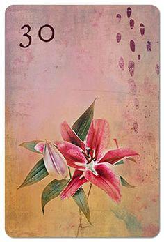 Mondnacht Lenormand Karte 30: Lilien
