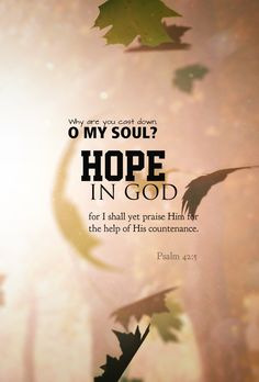 The Christian's hope is in the Lord, We rest secure in His sure Word; And though we're tempted to despair, We do not doubt that God is there. - D. Dehaan  No one is hopeless whose hope is in GOD.
