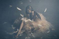 Broken Wings More of my work: Facebook | Instagram | Website #500px #bestof500px