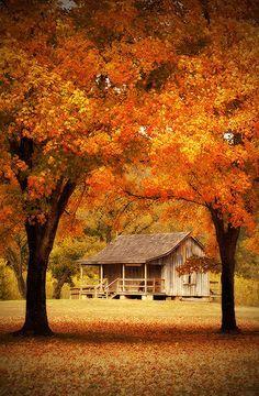 Missouri Ozarks | Missouri Ozark Fall Mill Tour.. beautiful. I'd like to go and do pics here