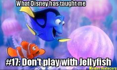 What Disney has taught me - ooohh i hate jelly fish!!