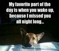 Awwww....so sweet!