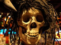 """Reggae Raider"" - real skull in a dread-locks wig hanging in a voodoo shop - New Orleans, LA"