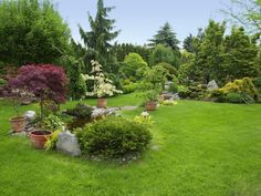 Combine bushes and trees with stones, a pond, and juicy grass for a beautifully…
