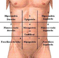 cuadrantes del abdomen - Buscar con Google