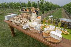 summertime cheese party in a vineyard