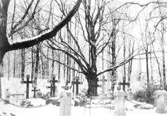 059-0093 Die Begraebnisstaette der Familie innerhalb des pruzzischen Burgwalles.jpg
