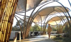 22 Awesome modern bamboo construction images