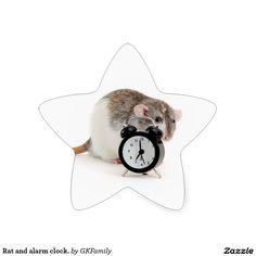 Rat and alarm clock. star sticker