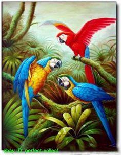 Blog da Natureza: Pinturas de animais