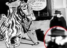 "Time Traveller With Cell Phone | In the DVD extras of Chaplin's ""The Circus,"" people were given access to a short film and photos of the movie's premiere in 1928…in which appears a person seemingly talking on a cell phone. Filmmaker George Clarke recently claimed this was proof of time travelers, and the story captivated the internet.   Some raised the prospect that this person was actually using an ear trumpebut this doesn't explain why the woman appears to be talking into the device"