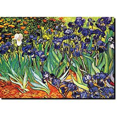 @Overstock - Artist: Vincent Van Gogh  Title: Irises, Saint-Remy  Product type: Gallery-wrapped canvas arthttp://www.overstock.com/Home-Garden/Vincent-Van-Gogh-Irises-Saint-Remy-Canvas-Art/5113439/product.html?CID=214117 $26.99