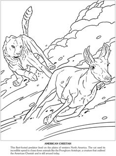 Prehistoric Beasts Of The Ice Age Adult Coloring PagesColoring
