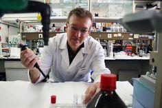 Expertos de la US participan en la identificación de mediadores clave en los procesos de inflamación cerebral