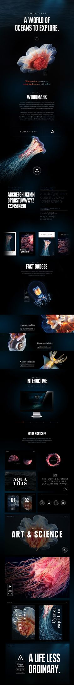 House of van Schneider developed a new brand identity & interactive web experience for the launch of Aquatilis Expedition in collaboration with Alexander Semenov. A three-year underwater journey through the unknown, set to explore the world's most extra o…
