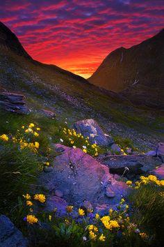 0035PHOTO - Vitalijus Serioginas - Чудесный свет