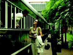 Rovos Rail brings you luxury train travel throughout Africa. The Pride of Africa is hailed as the most luxurious train in the world. Visit to find out more! Train Tracks, Train Rides, Europe Train Travel, Africa Travel, South Africa Safari, Train Tour, Blue Train, Victoria Falls, Train Journey