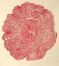 by Bryan Nash Gill - Gill cuts massive cross-sections of tree trunks, meticulously inks the surface, and then transfers the ink onto handmade paper, revealing these beautiful prints.