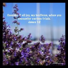 Consider it all joy, my brethren, when you encounter various trials. James 1-2