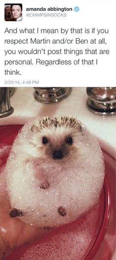This is revolting. I know people try to get embarrassing pictures of celebrities, but everyone deserves privacy. Give Martin Freeman A break, I mean, is it necessary to get a picture of him in a bubble bath?