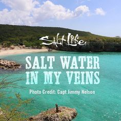 Salt water in my veins! Live The Salt LIfe