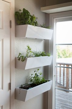 Kitchen small herb garden. - Love it -  -  To connect with us, and our community of people from Australia and around the world, learning how to live large in small places, visit us at www.Facebook.com/TinyHousesAustralia