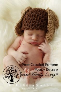 Free Crochet Pattern -- Puppy Hat -- from Sunset Family Living