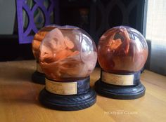 Preserved Fetal Pig Wet Specimen Globe with by TheSleepingSirens