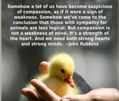 ~ courtesy John Robbins #vegan