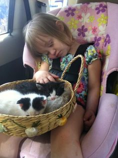 BONUS: A KITTEN BASKET WITH A SLUMBERING BEBE. | 41 Pictures For When Life Just Sucks