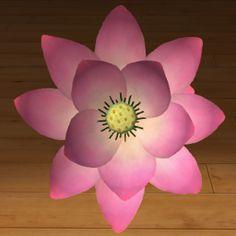 Lotos różowy 3D www.florysta3d.pl