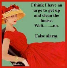 f44c605765870fe377ae81711913c3ff--clean-house-retro-humor.jpg
